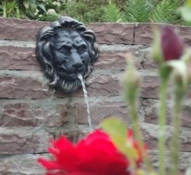 Gietijzeren leeuwen als fontein